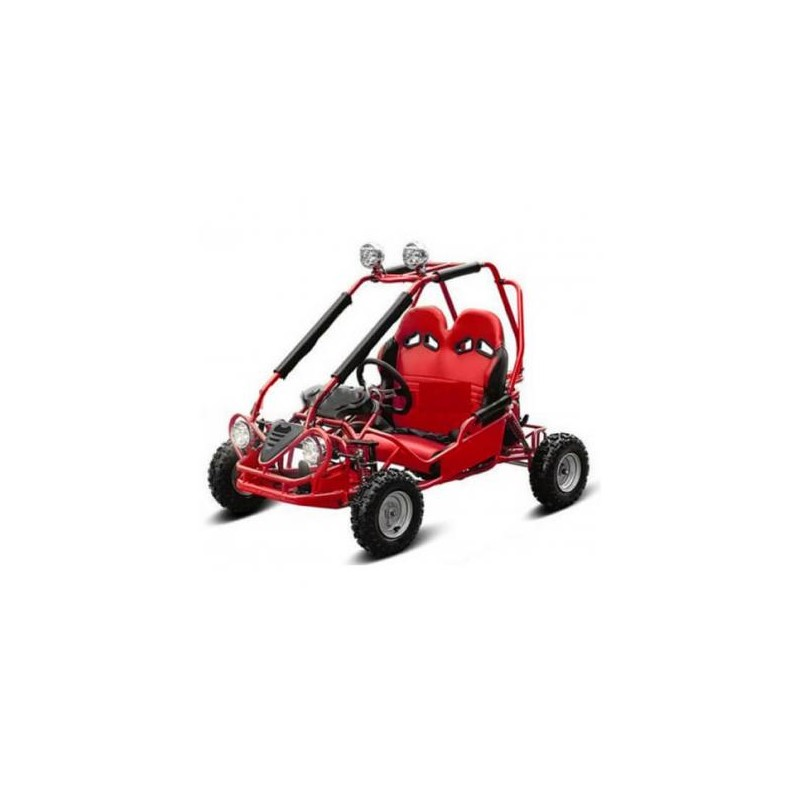 NCX BUGGY 4STRIKE 50 R6