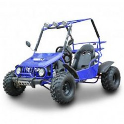 NCX BUGGY 4 STRIKE 200