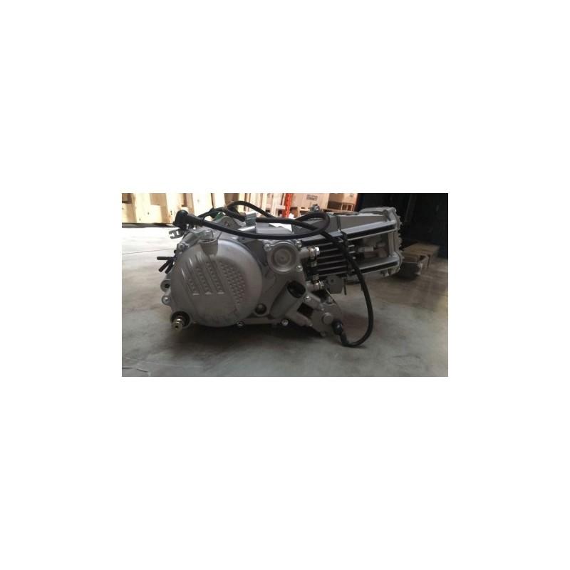 BLOCCO ZS190 + kit cablaggio ZHONG SHENG GPX 190cc 5 TEMPI PIT BIKE
