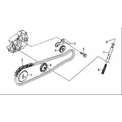 SET CATENA DISTRIBUZIONE YX 125cc 125 - blocco motore 4 tempi kayo krz