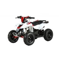 MINIQUAD RACER ELETTRICO 1000W