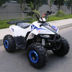 QUAD EXPLORER 110CC