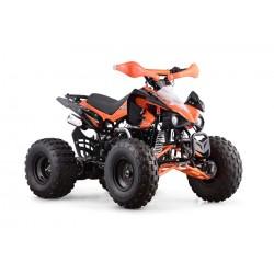 QUAD SKYNER 125cc 4T R8' PROFIVE
