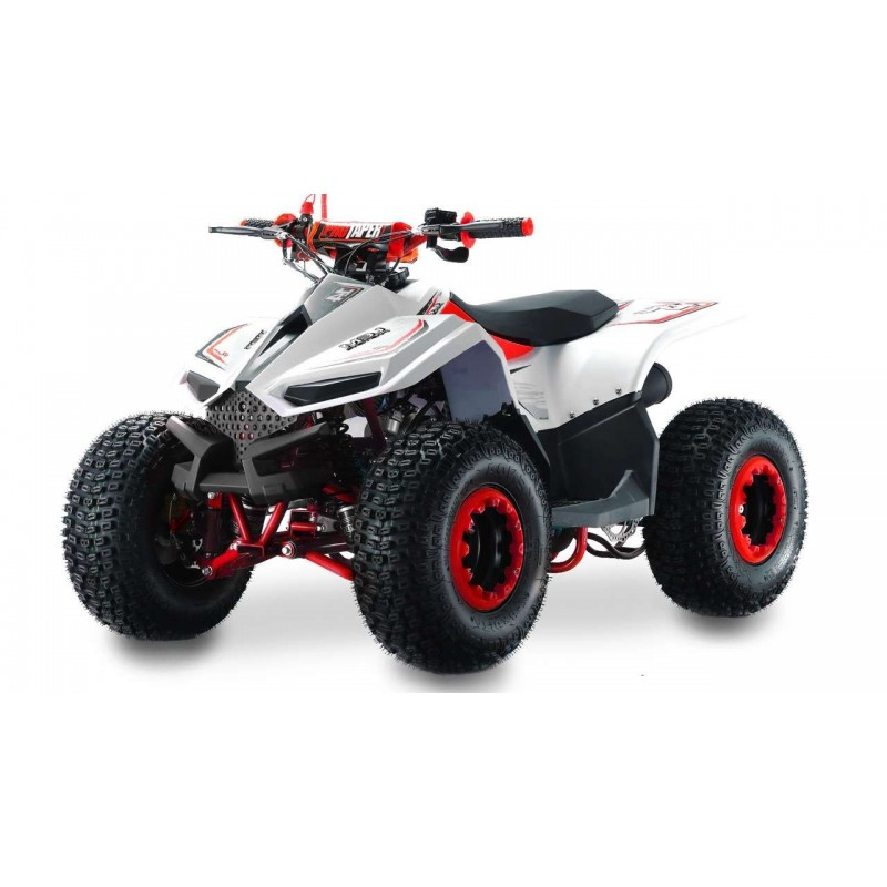 Lem QUAD ATV 110CC