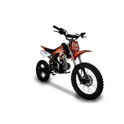 Pit Bike Bulls 125 cc  17 14