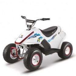 NCX BAYMAX 500W R6 BIG...